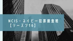 NCIS ネイビー犯罪捜査班 シーズン16